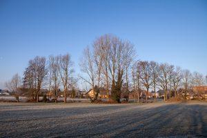 Hedemer Siedlung von der Hedemer Straße aus fotografiert. Foto: Eva Rahe